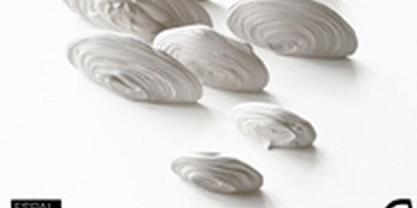 Inaugurem l'exposició Natural/Artificial a l'Espai d'Art Moritz