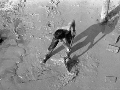 Memòria històrica: la memòria del fang