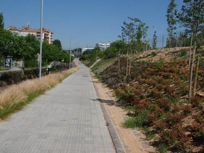 Pressupostos 2021: Millorar l'espai públic i avançar cap a una ciutat més cohesionada i sostenible