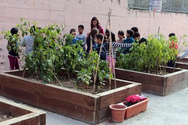 20160126_Escola Sant Ildefons-16755.jpg