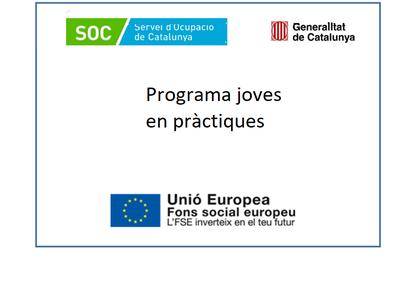 L'Ajuntament participa per tercer any consecutiu en la convocatòria del SOC, Joves en Pràctiques