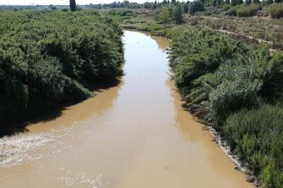20150620_Visita riu Llobregat-10500.jpg
