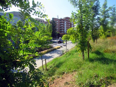 20190903_Avinguda Alps-6526.jpg
