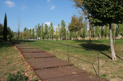 20201118-Parc de Rosa Sensat-3750.jpg