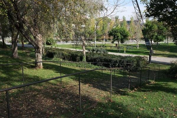 20201118-Parc de Rosa Sensat-3820.jpg
